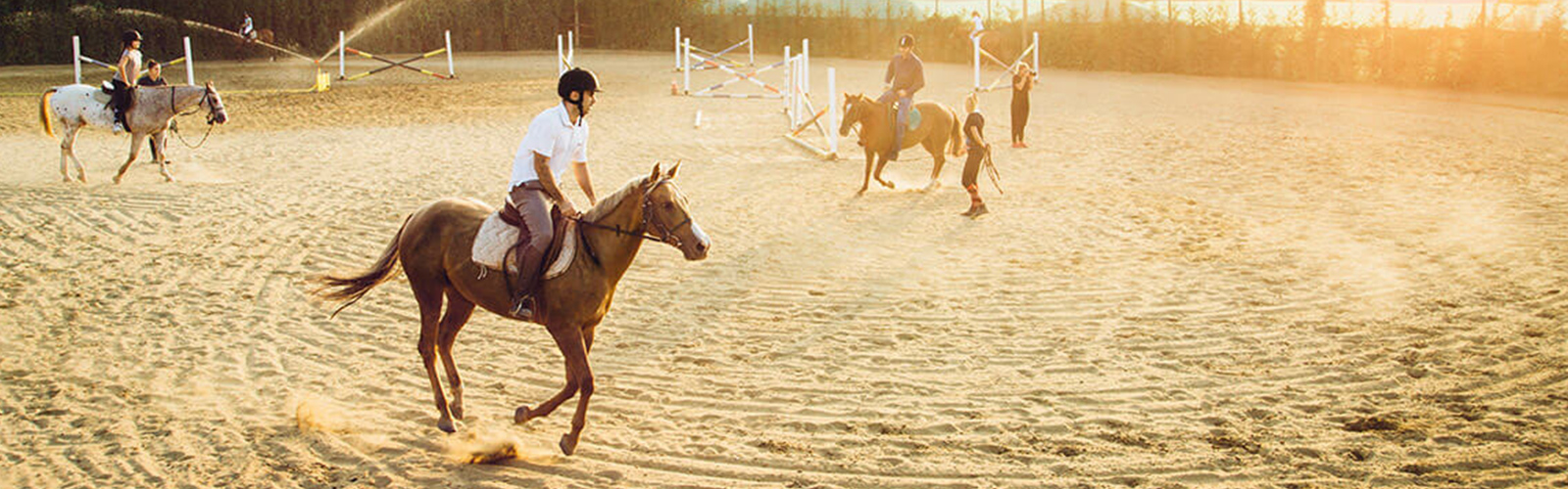 Concierge Belgrade | Horse riding